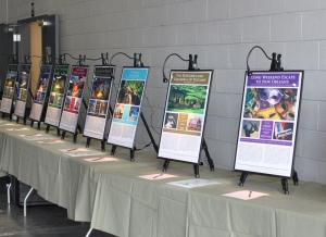 Deep Creek Lake Art and WIne Festival Silent Auction